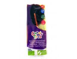 Candy Tree ekologiškas ledinukas ant pagaliuko su juodųjų serbentų sultimis