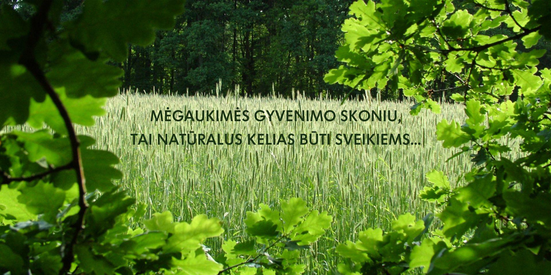 azuolas_su_tekstu